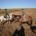 Enjoying the landscape from horseback in Cambria, CA